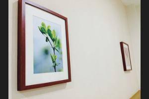 Menteng House Jakarta - Interior Detail