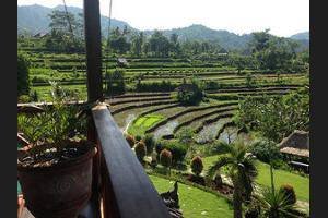 Sawah Indah Villa Bali - Balcony View