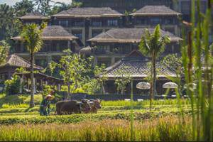 Mandapa, Ritz-Carlton Reserve Ubud - Exterior