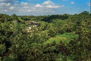Four Seasons Sayan - Aerial View