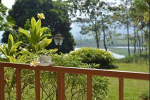 Selorejo Hotel & Resort Malang - Guestroom View