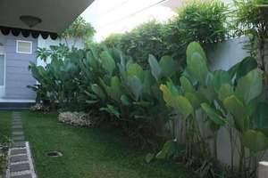 The Sriwijaya Hotel Padang - Lingkungan Hotel