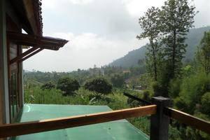 Istana Petani Hotel  Probolinggo - Pemandangan