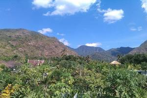 Alami Resort & Restaurant Bali - Eksterior