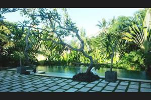 Luwak Ubud Villas Bali - Outdoor Pool