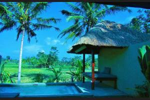 Temuku Villas Ubud - Guestroom