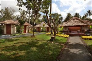 Temuku Villas Ubud - Garden