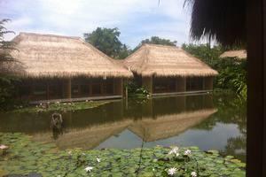 Sapulidi Resort Spa & Gallery Bali - Eksekutif Double