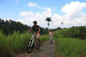 The Lokha Ubud - Cycling