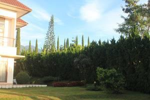 Villa Sophia Cimacan Puncak Cianjur - Taman