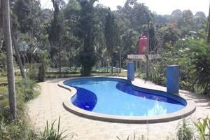 Rizen Kedaton Hotel Bogor - Swimming Pool