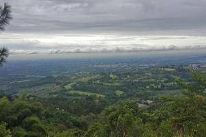 Rizen Kedaton Hotel Bogor - Hotel View