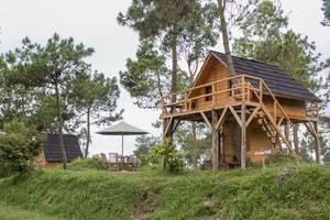 Papandayan Camping Ground
