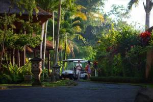 Furama Villas Ubud - Ambience