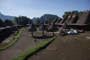 Homestay Tololela Flores - view
