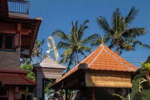 Kemangi Apartments and Yoga Space