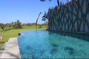 Ubud Padi Villas Bali - View from Hotel