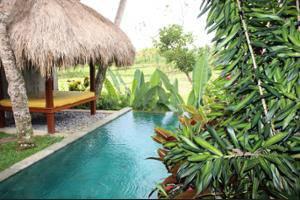 Ubud Padi Villas Bali - Outdoor Pool