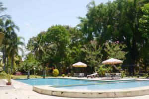Manyar Garden Hotel Banyuwangi - Swimming Pool