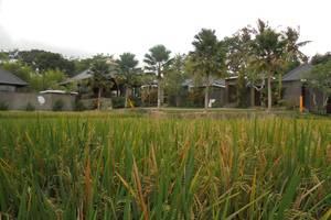 Umae Villa
