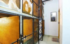 Kabin Kapsul Wisma Pondok Aren (Male Only) South Tangerang - Room