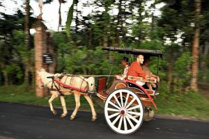 Plataran Borobudur Magelang - Carriage