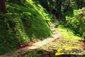 Sangga Buana Hotel Cianjur - jogging track