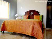 Pecatu Guest House Bali - Suite Room Regular Plan