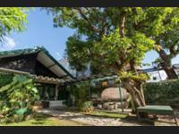 Mango Tree Dipudjo Homestay di Jogja/Jogja