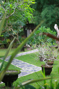 Sarin Ubud Suites Bali - Deluxe Room Regular Plan