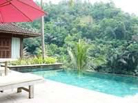 Ayung Resort Ubud - Villa Deluxe 1 kamar tidur dengan kolam renang pribadi Regular Plan