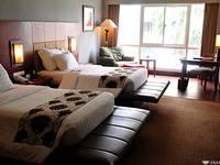 Hotel Blue Sky Balikpapan - Executive Room Only  Regular Plan