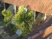 Wahyu Homestay 1 di Bali/Lembongan