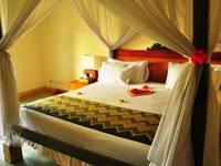 Alam Puri Art  Bali - Kamar Deluxe Dengan Pemandangan Sawahnya Last Minute Special Rate 60% discount!