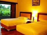Sambi Resort Yogyakarta - Deluxe double or twin room only Regular Plan