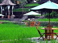 Padi Heritage Hotel di Malang/Lowokwaru