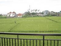 Pondok 828 Guest House di Bali/Denpasar