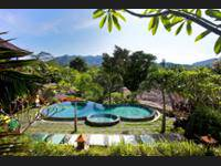 Teras Bali Rice Terrace Bungalows and Spa di Bali/Candidasa