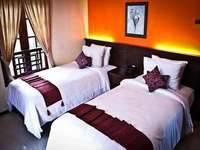 Royal Orchids Garden Hotel Malang - Catalya Deluxe SUPER DEAL