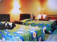 Foresta Inn Tretes - Superior Room Minimum Stay - Superior Room