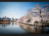 Centurion Ladies Hostel Ueno Park - Caters to Women di Tokyo/Tokyo