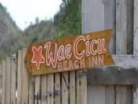 Waecicu Beach Inn di Flores/Flores