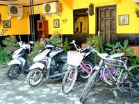 Udan Mas Guesthouse & Gallery
