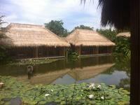 Sapulidi Resort Spa & Gallery Bali - Eksekutif Double Regular Plan