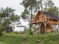 Papandayan Camping Ground di Garut/Garut