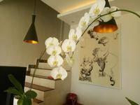 Villa Warna Ubud - One Bedroom Private Pool Villa Regular Plan